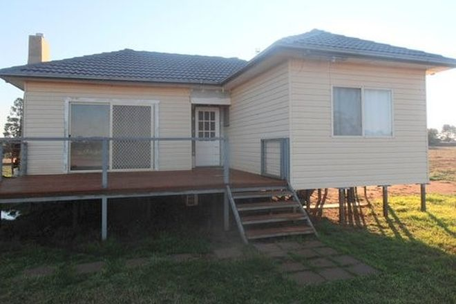 Picture of 47 Henry Parkes Way, CONDOBOLIN NSW 2877