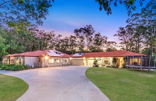 Picture of 50 Pittas Place, Willow Vale QLD 4209
