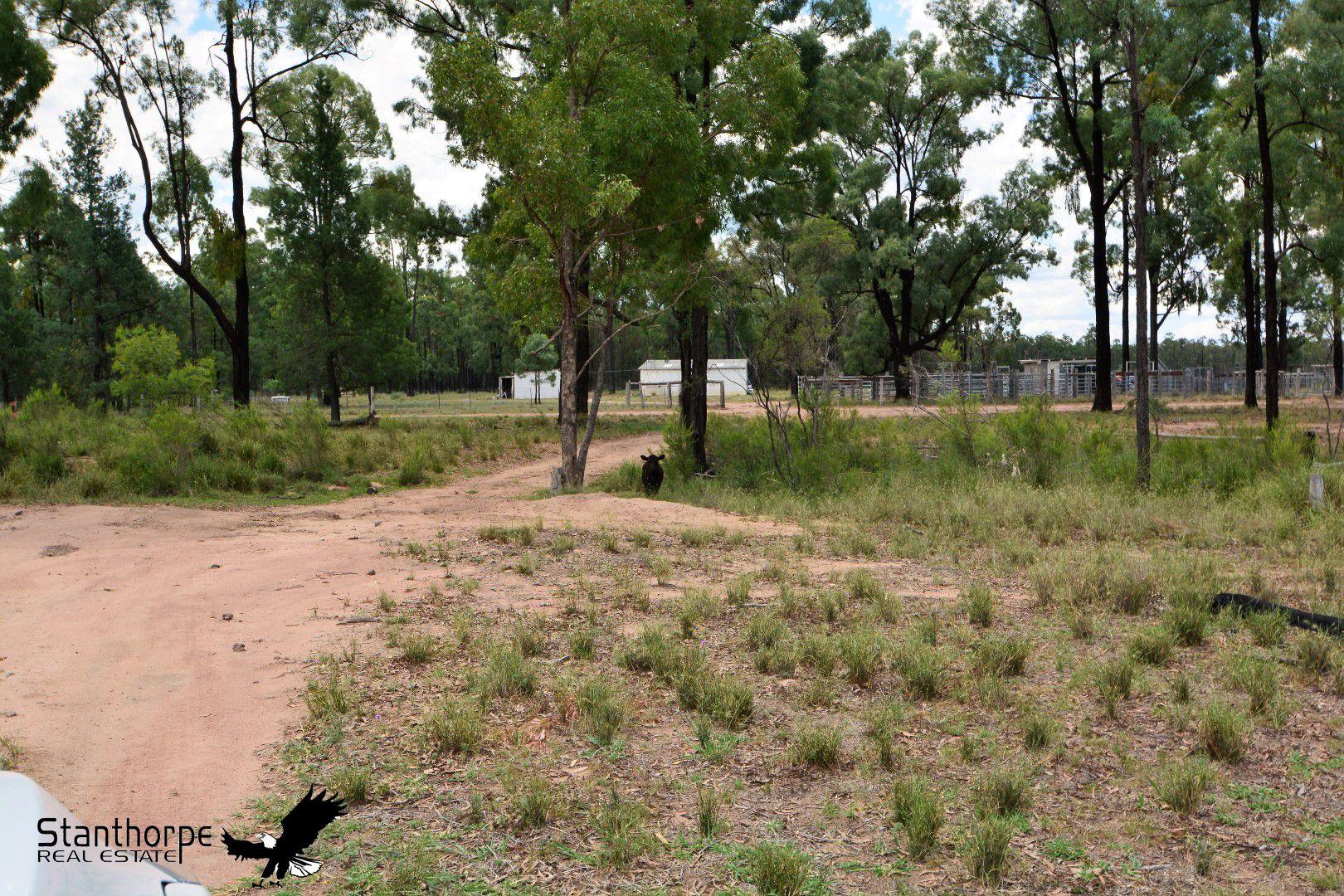 15010 Bruxner Highway, Camp Creek NSW 4385, Image 0