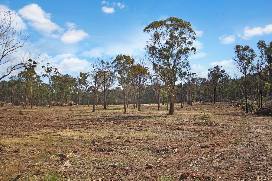 1332 Mount McKenzie Road, Tenterfield NSW 2372, Image 1