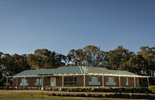 Picture of 42 Batinichs Road, Young NSW 2594