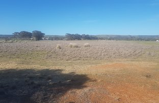 Picture of Lot 11 Beattie Road, Waggrakine WA 6530