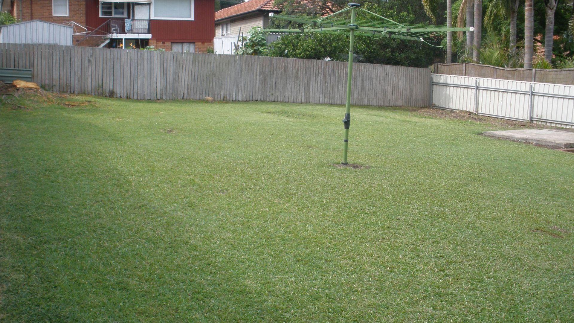 11 Orana Crescent, Adamstown Heights NSW 2289, Image 2
