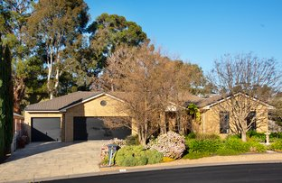 Picture of 14 Isabella Grove, Strathdale VIC 3550