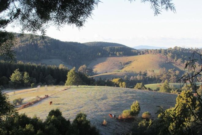 Picture of 1545 Turtons Creek Rd, FOSTER VIC 3960