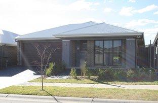 Lot 5522 Kale Road, Spring Farm NSW 2570