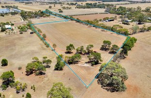 Picture of 50 Nottle Road, Gawler Belt SA 5118