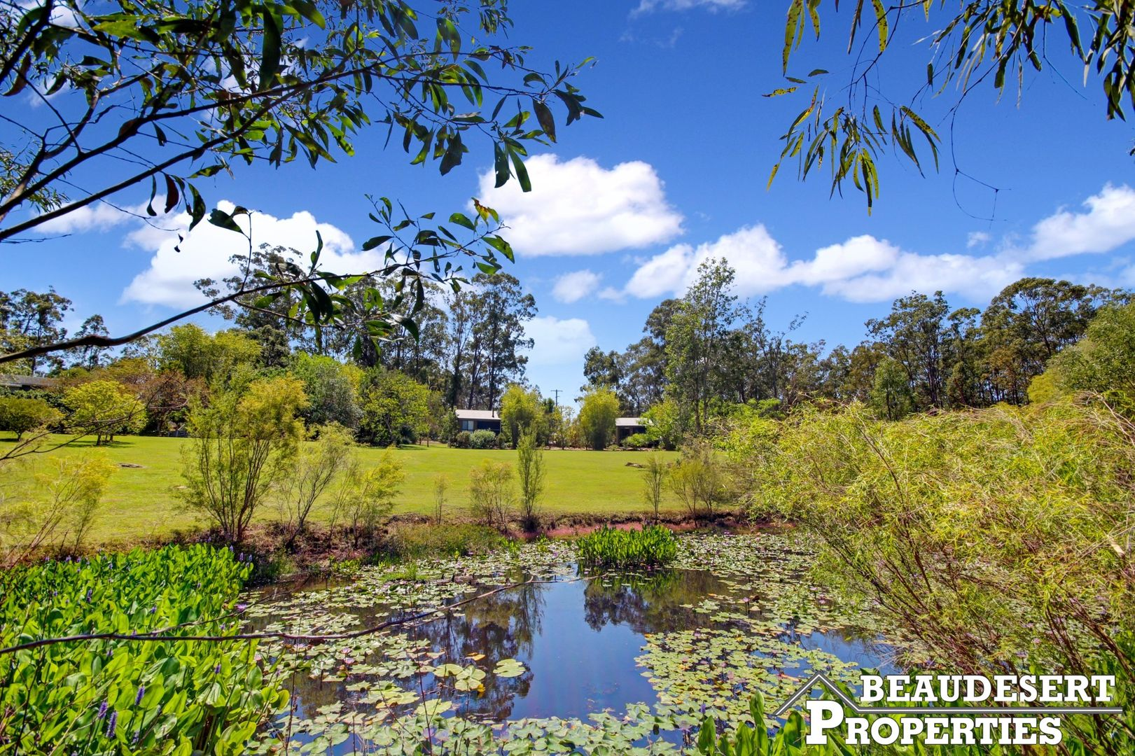 115 Forest Home Road, Rathdowney QLD 4287, Image 0