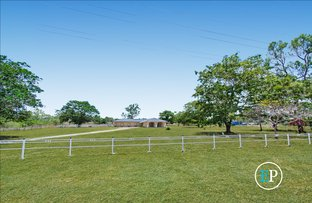 Picture of 4 Hannon Court, Alligator Creek QLD 4816