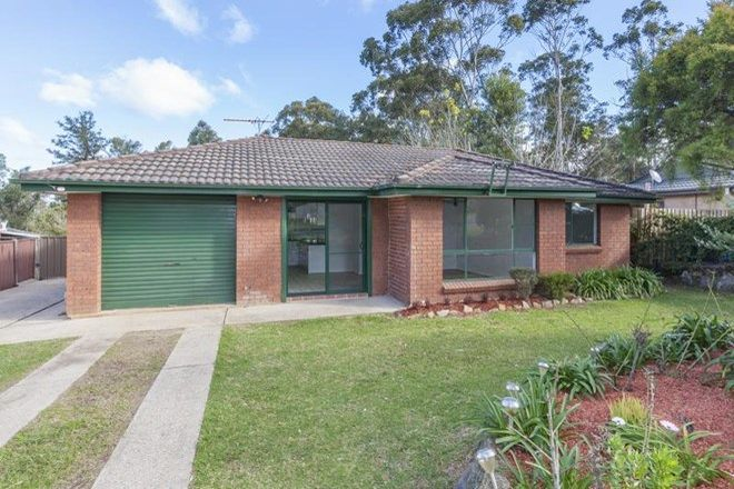 Picture of 11 Illingworth Road, YELLOW ROCK NSW 2777