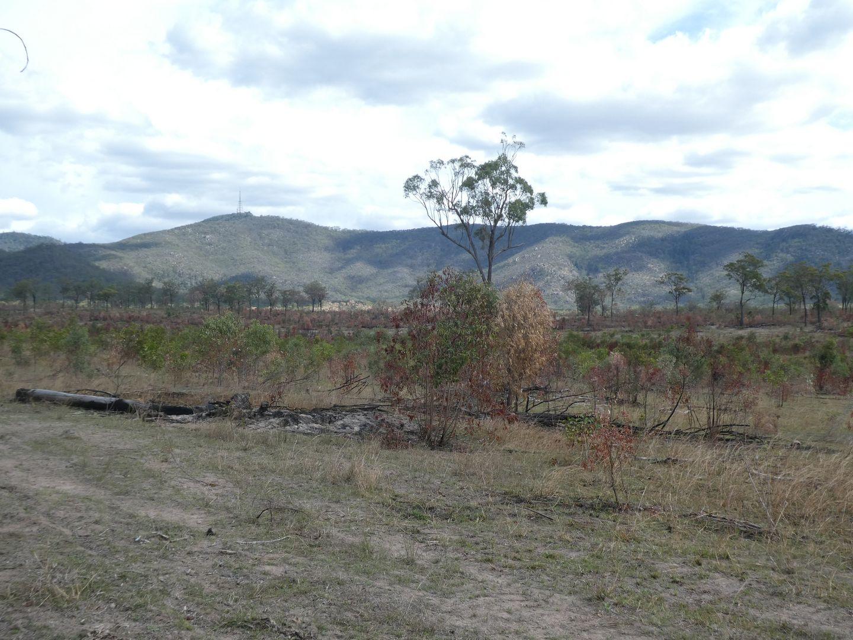Golden Fleece QLD 4621, Image 2