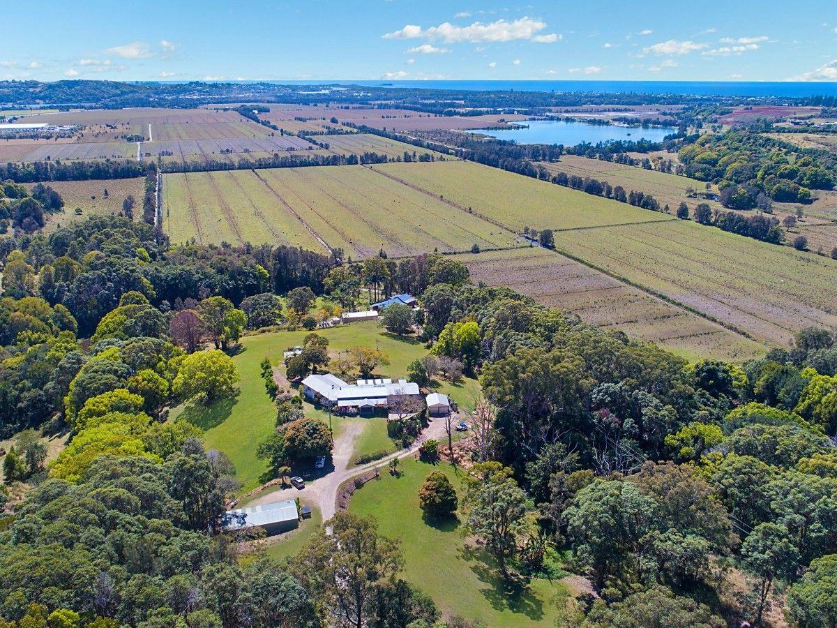 351 Cudgen Road, Cudgen NSW 2487, Image 0
