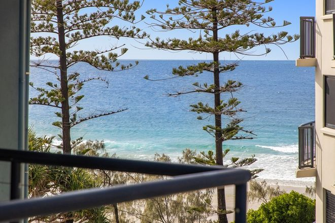 Picture of 43/1750 David Low  Way, COOLUM BEACH QLD 4573