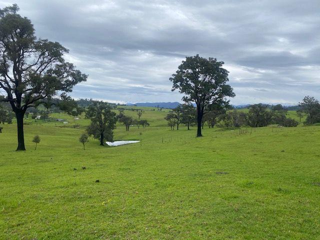 376 Upper Brogo Road, Verona NSW 2550, Image 1