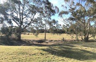 157 Jerrara Road, Marulan NSW 2579