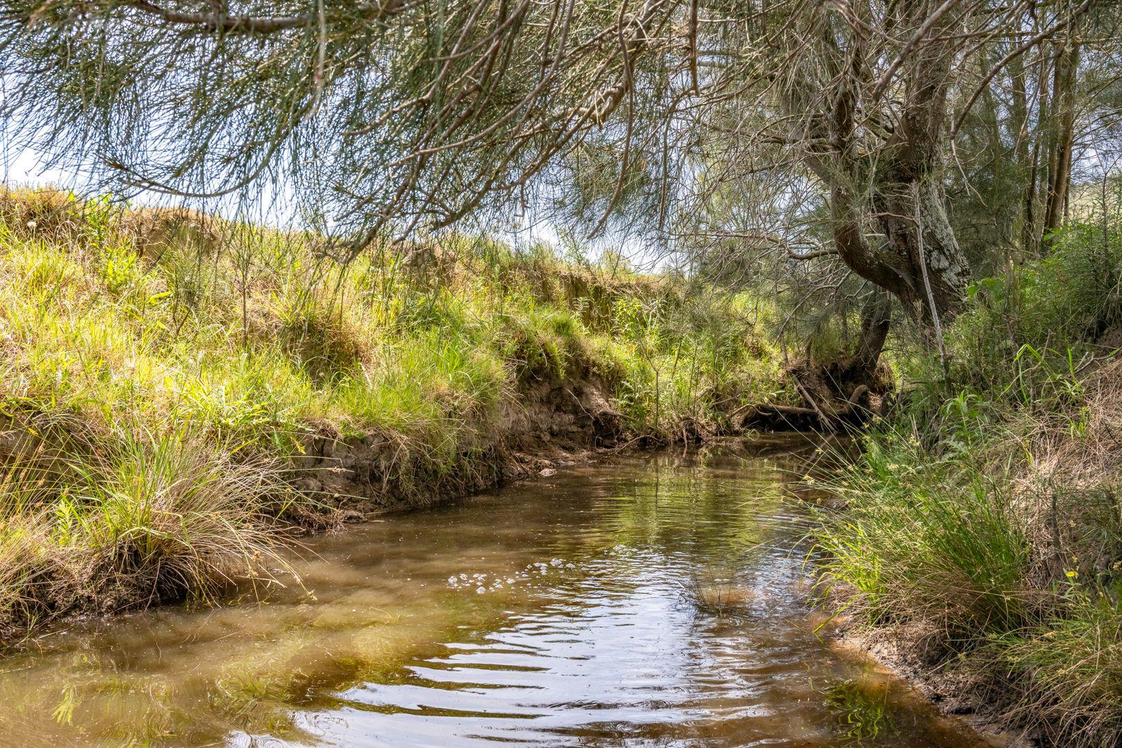 Lot 30 (DP865027)16 Hanleys Creek Road, Tabbil Creek Via, Dungog NSW 2420, Image 1