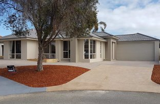 2 and  4 Bittern Court, Stirling WA 6021