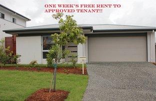 #11 Cudmore Street, Pimpama QLD 4209