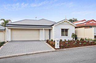 Picture of 7/4 Baudin Avenue, Fairview Park SA 5126