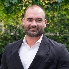 Anthony De Iesi, Sales representative