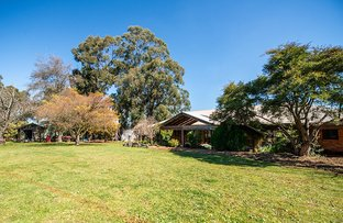 Picture of Wandin East VIC 3139