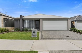 Picture of 35 Brigalow Street Street, Banksia Grove WA 6031