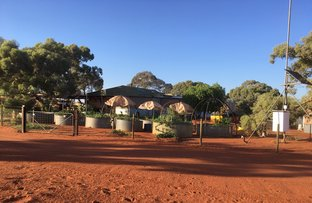 Picture of 'Barrambie Station', Sandstone WA 6639