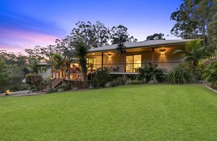 Picture of 46 Monarch Place, Mons QLD 4556