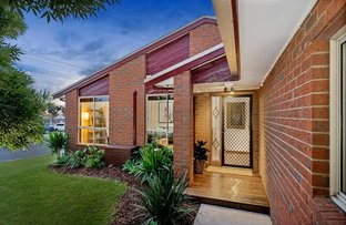 Picture of 43 Heytesbury Drive, Leopold VIC 3224