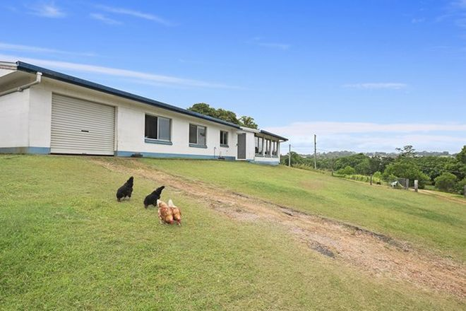 Picture of 146 Old Palmwoods Road, WEST WOOMBYE QLD 4559