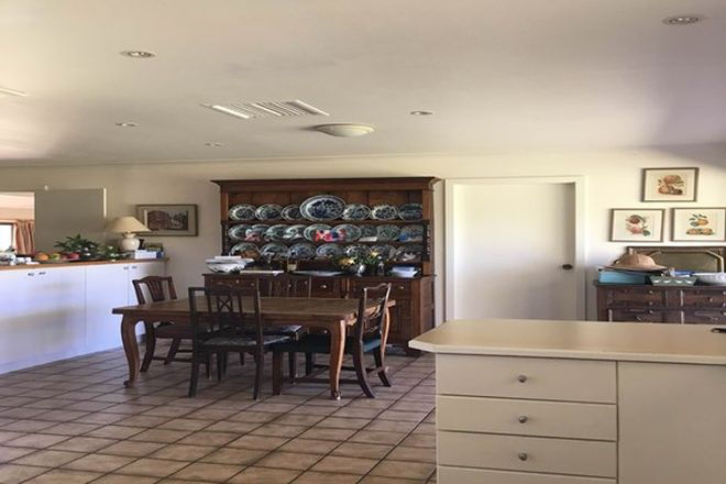 Picture of Mount Mitchell 50 Wyuna Road, MULLALEY NSW 2379