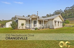 Picture of 230 Nectarbrook Drive, Orangeville NSW 2570