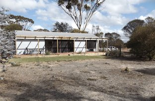 Picture of 9 Withnell Rd, Woodanilling WA 6316