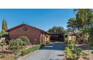 Picture of 21 Howitt Road, Shepparton VIC 3630