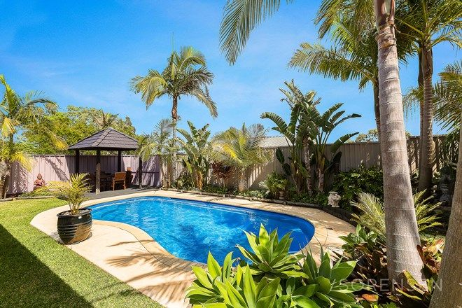 Picture of 52 Rosella Circuit, BLUE HAVEN NSW 2262