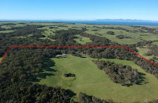 Picture of 620 McBurnie & Boags Rd, Tarwin Lower VIC 3956