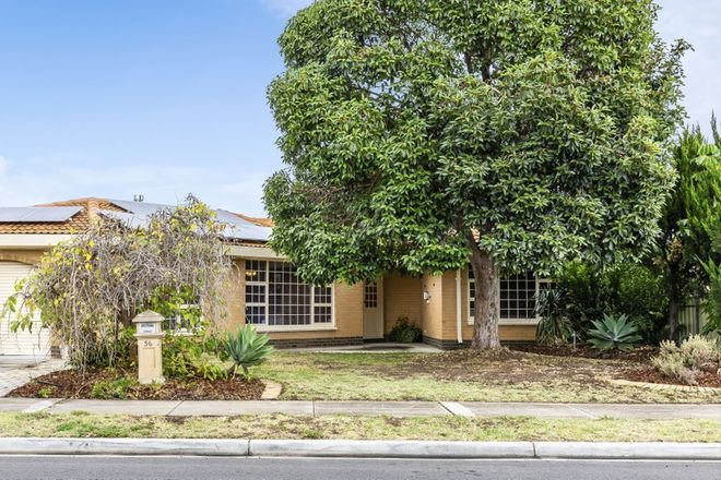 Picture of 56 Streeters Road, NETLEY SA 5037