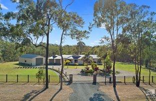 Picture of 392 Bidwill Rd, Bidwill QLD 4650