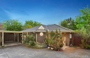 Picture of 2/443 Middleborough Road, Box Hill North VIC 3129