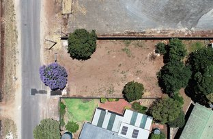 Picture of Valley Road, Angaston SA 5353