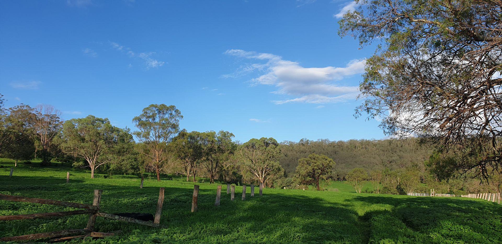 281 Bernard Road, Nobby QLD 4360, Image 2