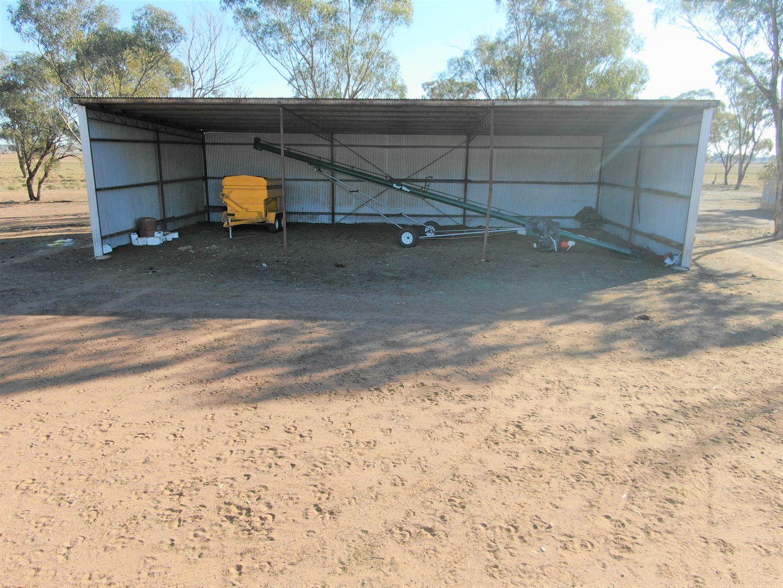 342 Mulga Lane, West Wyalong NSW 2671, Image 1