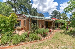 66 Davis Road, Orange NSW 2800