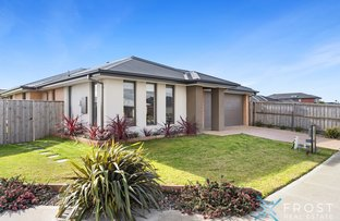 Picture of 11 Mulgrave Boulevard, Kalkallo VIC 3064