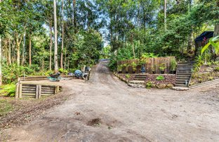 Picture of 79 - 81 Timbarra Drive, Beechmont QLD 4211
