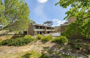 Picture of 8A/30 Glenorchy Street, Lyons ACT 2606