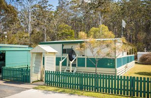 Picture of 59/3197 Princes Highway, Pambula NSW 2549