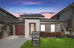 Picture of 37 Rowe  Drive, Potts Hill NSW 2143