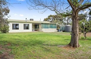 Picture of Lot 687 Hunt Road, Loveday SA 5345