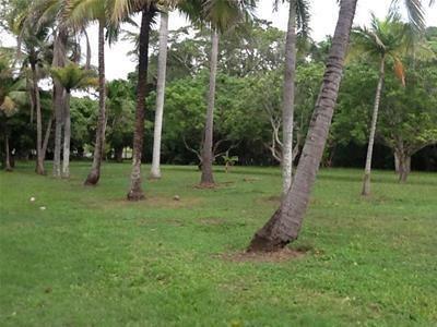 48 Paluma Road, Cannonvale QLD 4802, Image 1